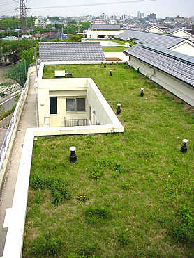 fugazawa2